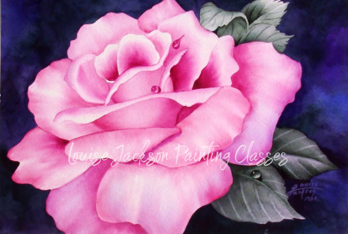 Beautiful Pink Rose watercolor painting by Louise Jackson.