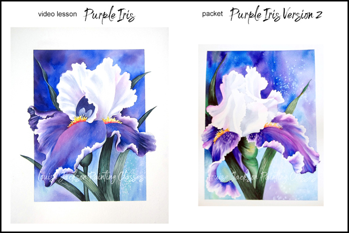 "Purple and White Iris paintings with text overlay, ""video lessons Purple Iris"" and ""packet Purple Iris 2"""