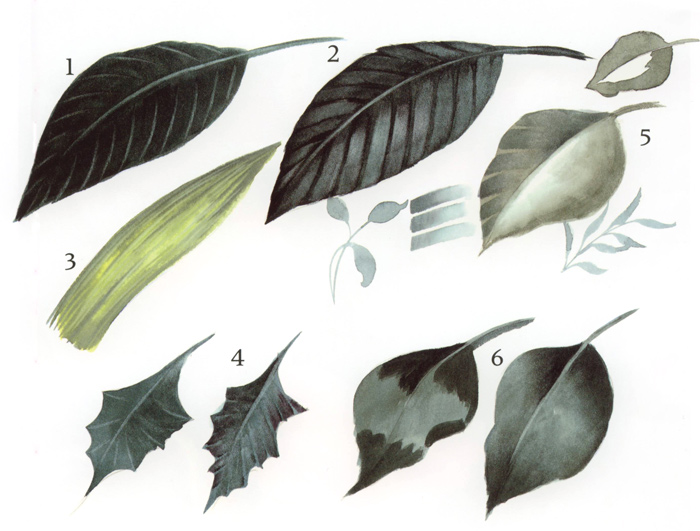 learn how to a variety of leaves using watercolors or acrylic paints