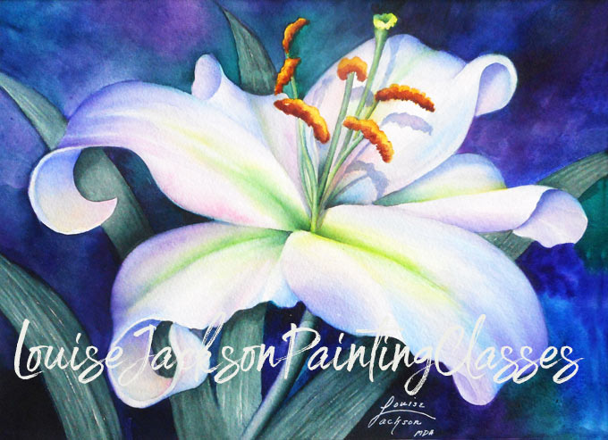 White lily watercolor painting by Louise Jackson, Master Decorative Artist