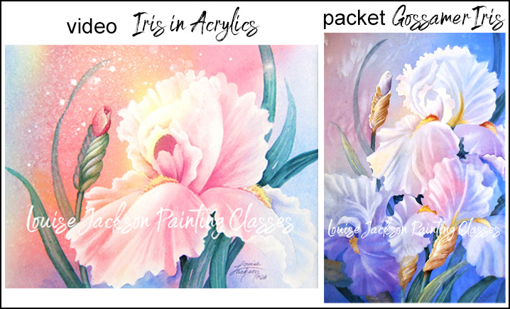 pastel iris painted using acrylics and gossamer iris painted using watercolors